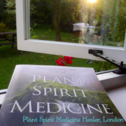 Plant Spirit Medicine in the City @ Light Centre Moorgate | England | United Kingdom