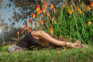 Yin Yoga And The Chakras @ Light Centre Belgravia | England | United Kingdom